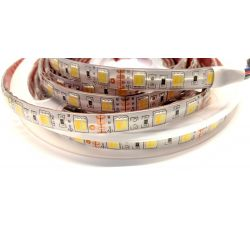 Diolight RGB+CCT LED bånd...