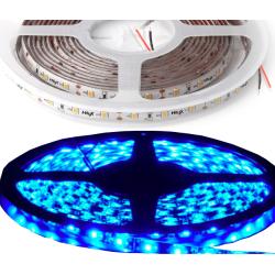 HiluX LED Bånd 12V i BLÅ IP65 800Lm/m - 5 Meter