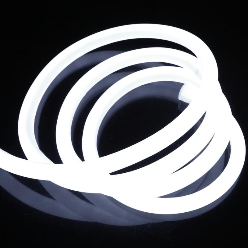Diolight NEON 360° 230V IP68 6000K - Metervare