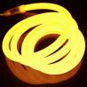 LED Ropelight